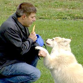 Dog Park Proposal_-2880242185602185852