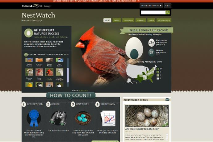 Content API Import Image_-1186549723310633470