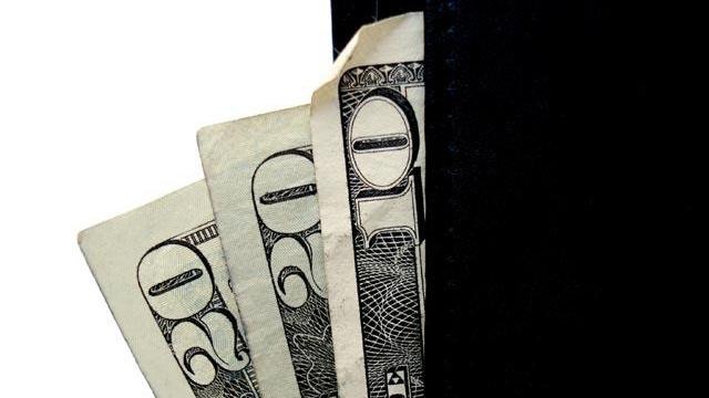 Money in wallet_2291521671445553-159532