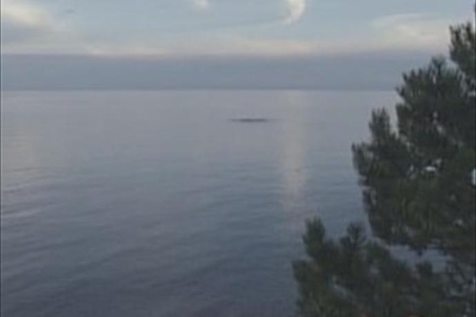 lake ontario_-2886045837498956935
