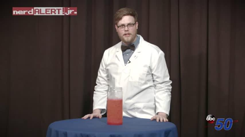 Nerd Alert Jr. : Homemade Lava Lamp