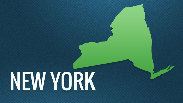 New York state template_1460069485471-159532.jpg58787989