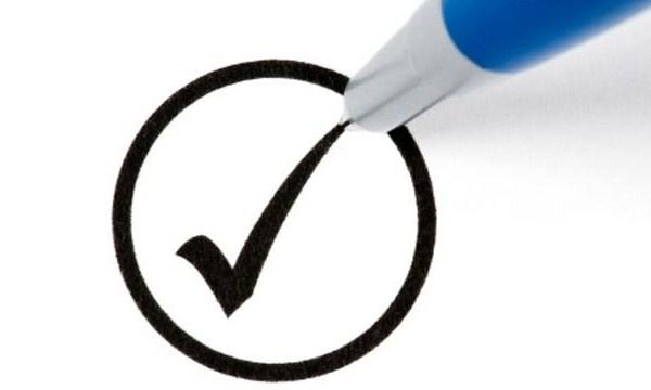 Voting checkmark_1933583632903702-159532