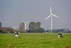 windmills_1506430895293.jpg