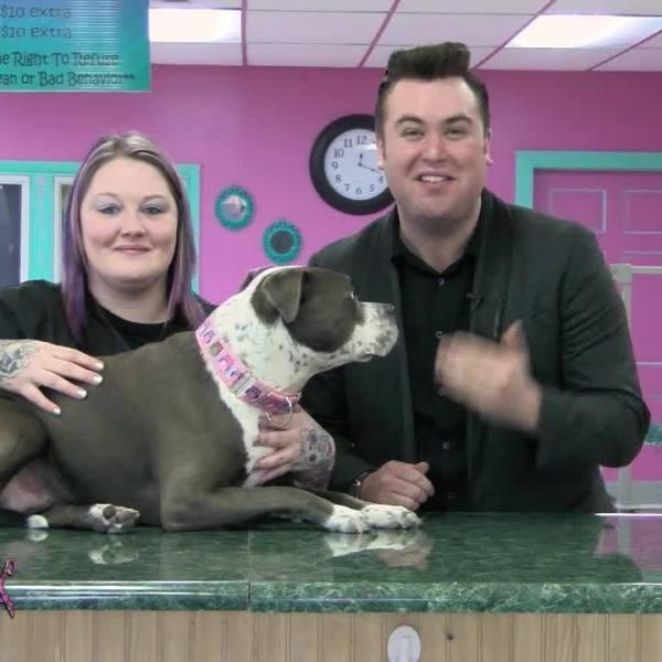 Jessie's Pet Spa: Bubbles's Pet Makeover