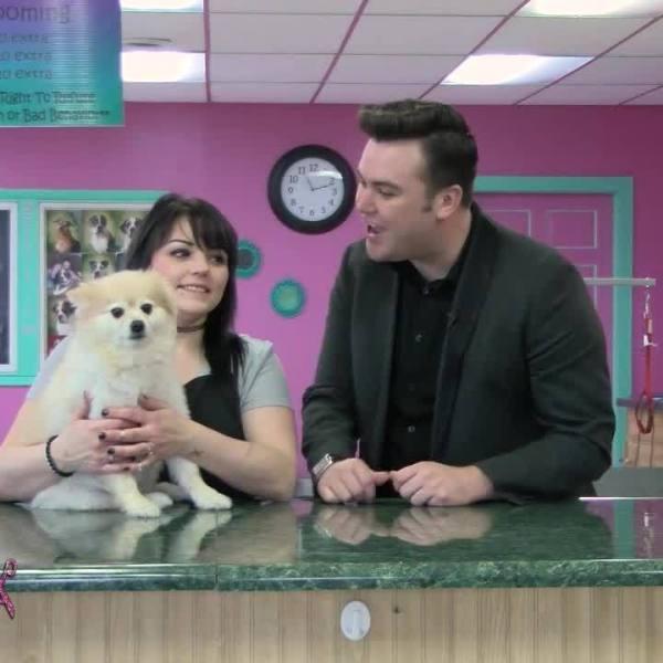 Jessie's Pet Spa: Dawson's Pet Makeover