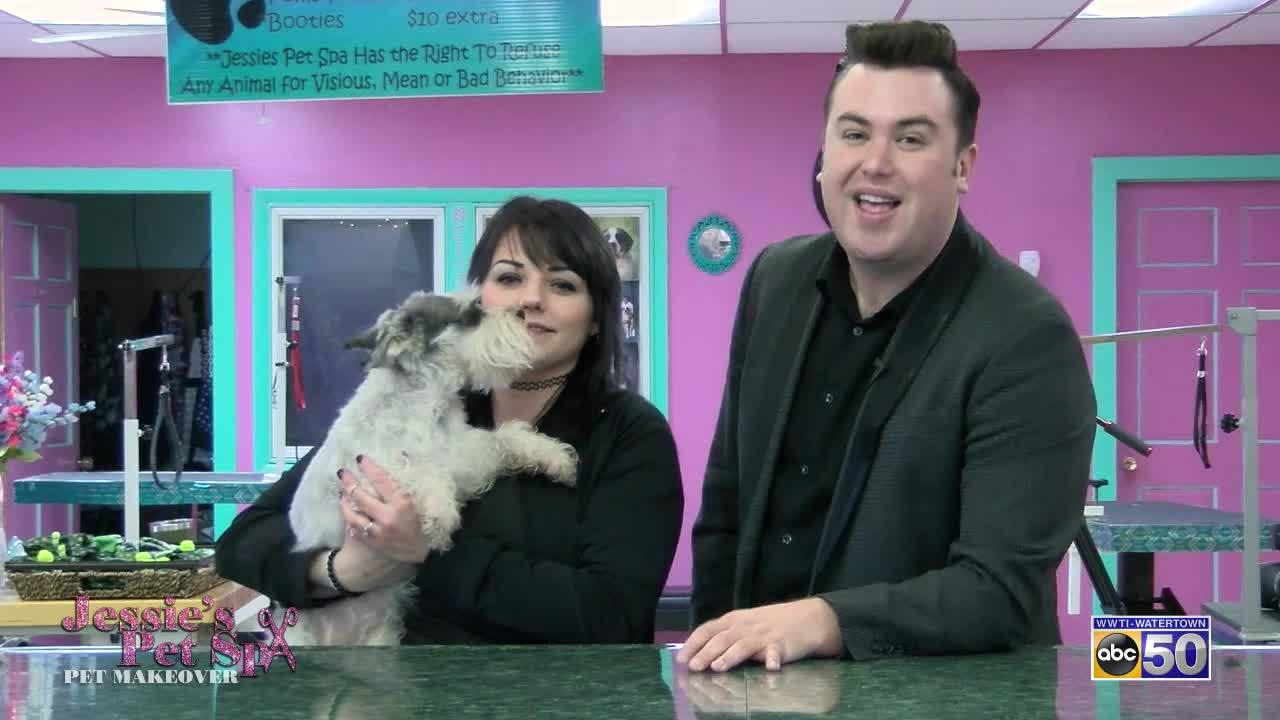Jessie's Pet Spa Pet Makeover: Caidence