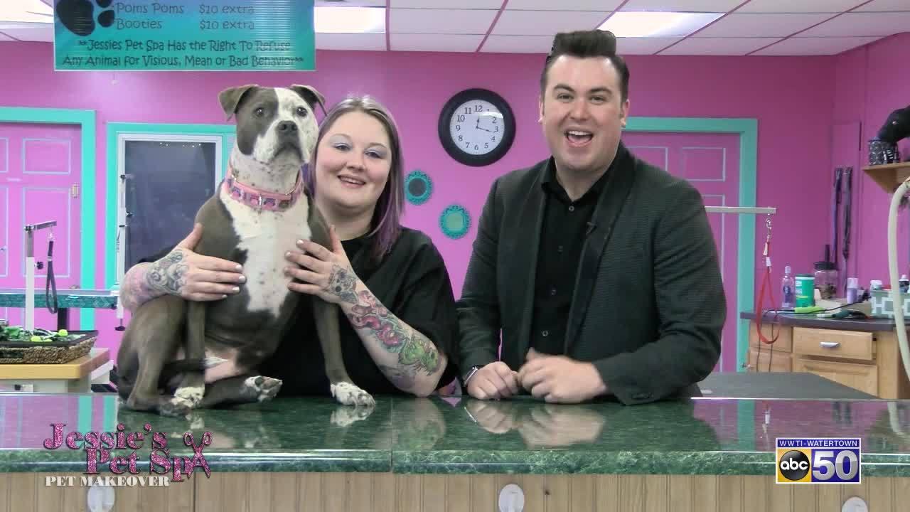Jessie's Pet Spa Pet Makeover: Bubbles Teeth