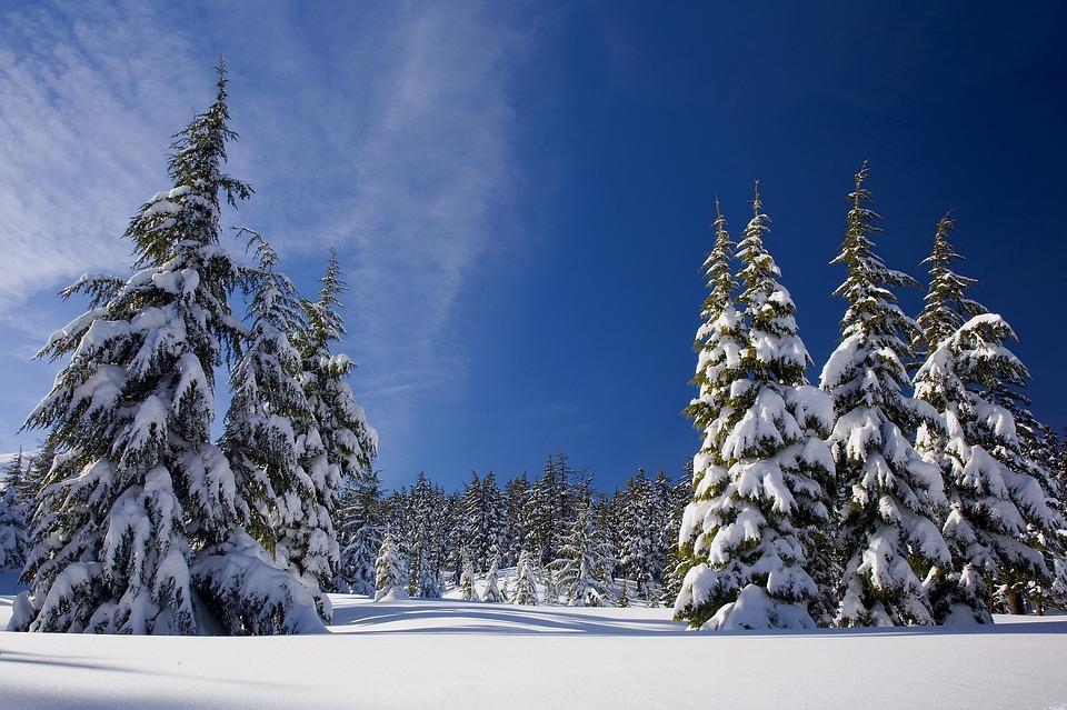 snow-1902052_960_720_1539898618225.jpg