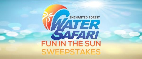 Fun in the Sun Sweepstakes | WWTI - InformNNY com