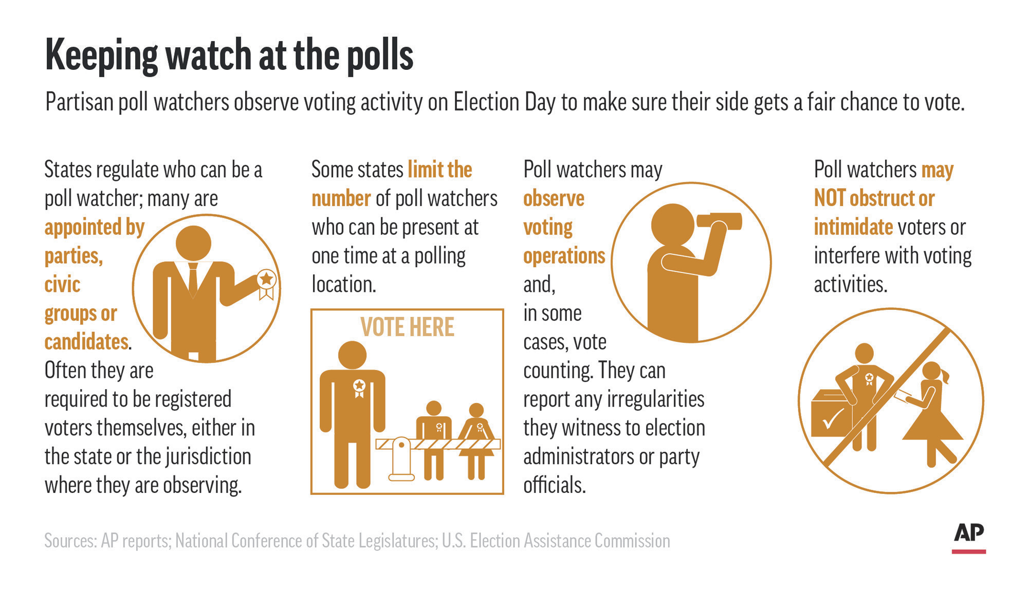 Explaining Election 2020-Poll Watchers